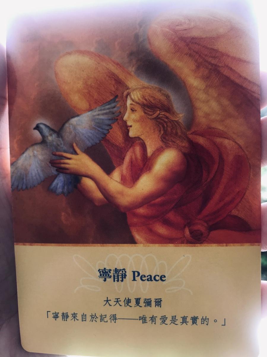 Weekly angel card guidance: Peace